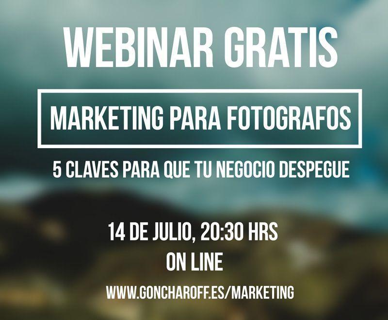 webinar marketing para fotografos 2014