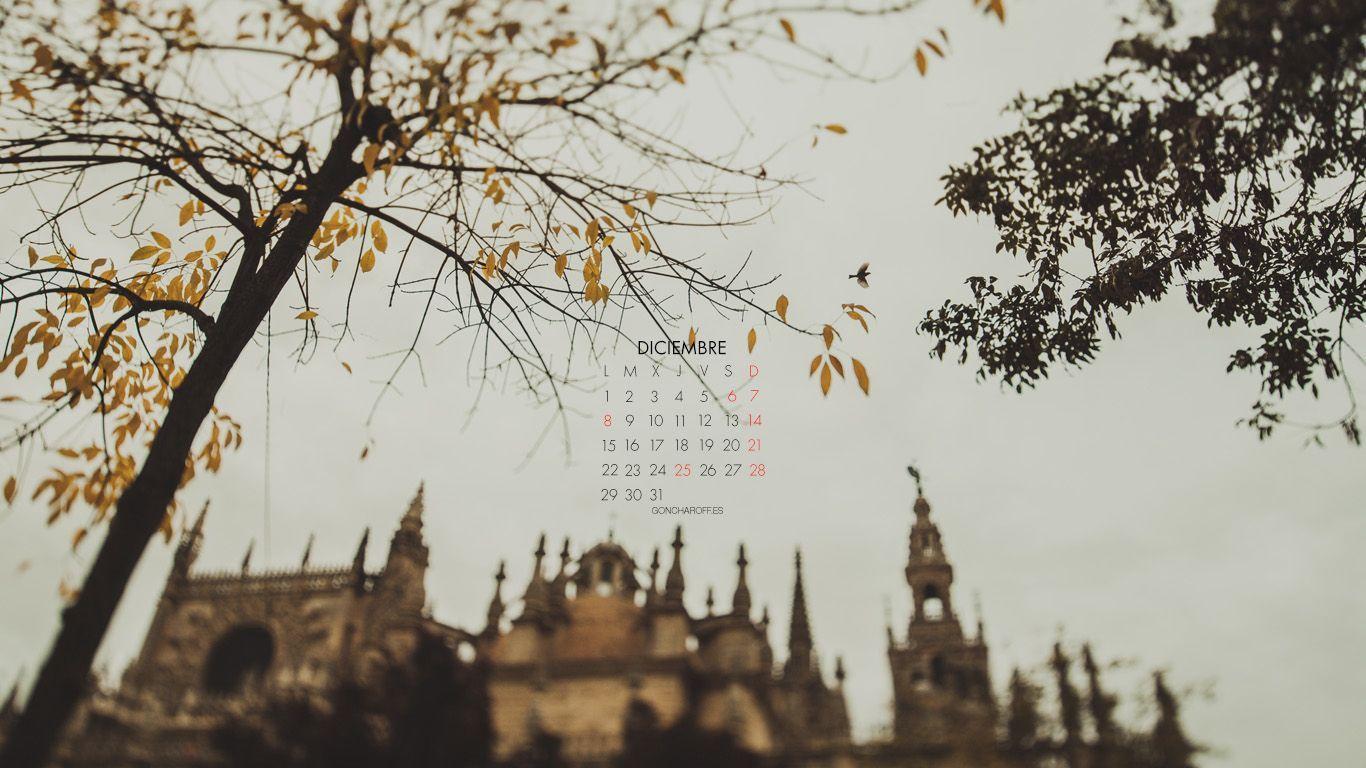 Diciembre 2014 1366x768