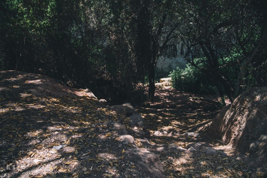Domingo de senderismo. Aledo